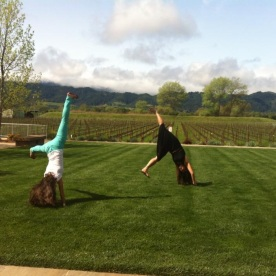 Cartwheels in Napa, CA