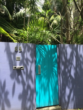 A pop of color against the leafy palms