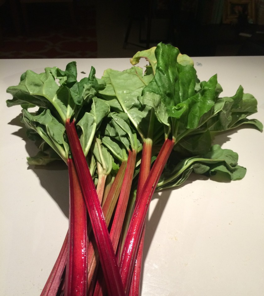 Rhubarb Rhubarb: fresh from the market