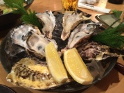 Giant oysters from Hokkaido