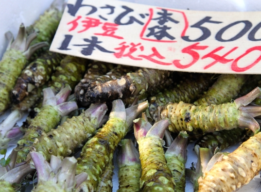 Fresh wasabi root in Tsukiji